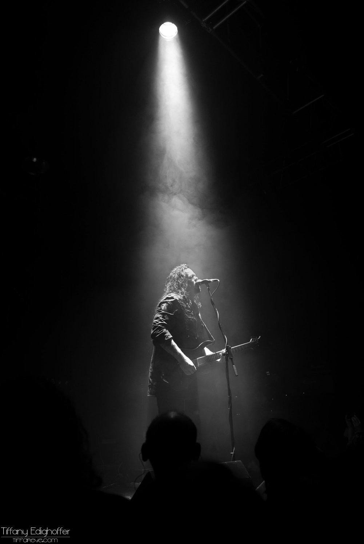 Evergrey (3) (1)